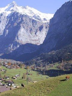 スイス 車窓.jpg
